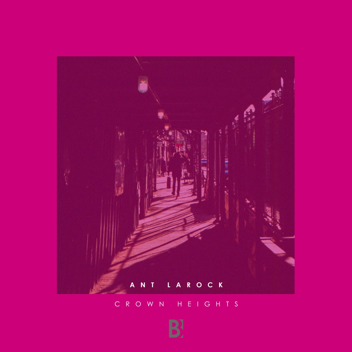 Premiere: Ant LaRock - Crown Heights [Brobot Records]