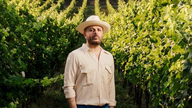Luca Bacchetti Wine Vines