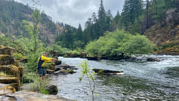 Thorlaf casting into the North Umpqua at Steamboat Inn Fishing Nature River Forest