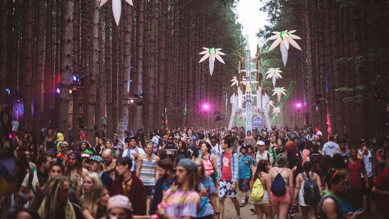 Electric Forest Clarifies the Confusion Surrounding the Alcohol Policy