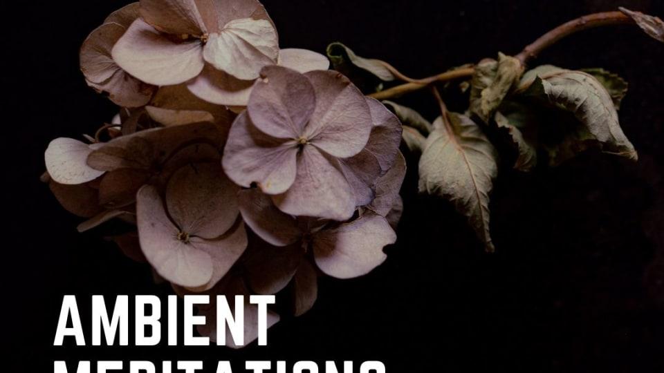 Ambient Meditations Season 2 - Vol 31 - David Ireland + R.A.D.E.