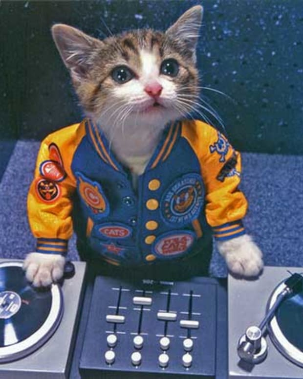 dj-kitty-main