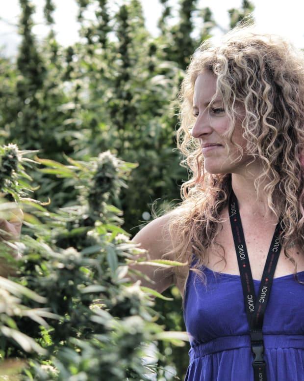 Cannabis-Yerba-Buena-amarett-19