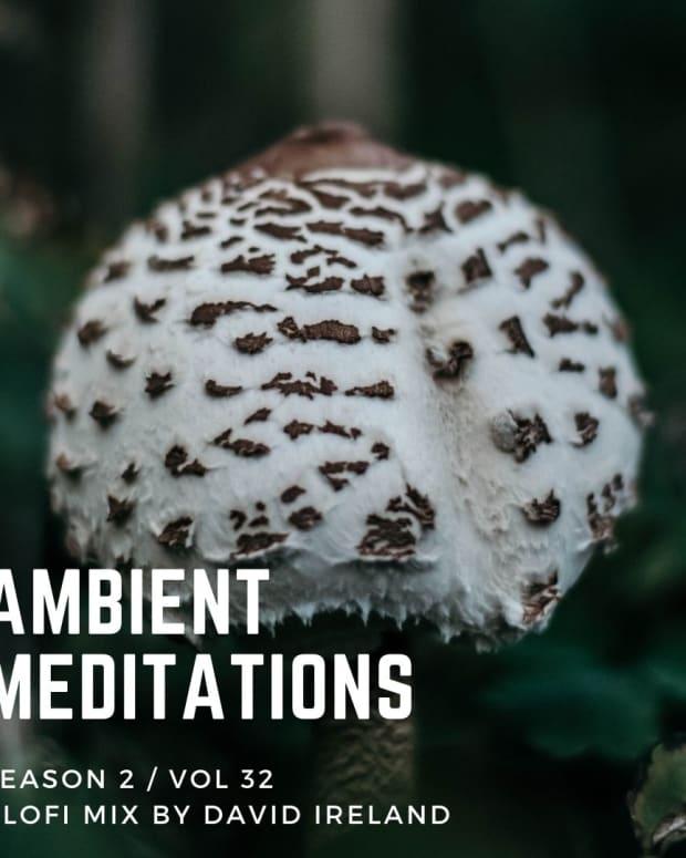 Ambient Meditations Mix LoFi Mix