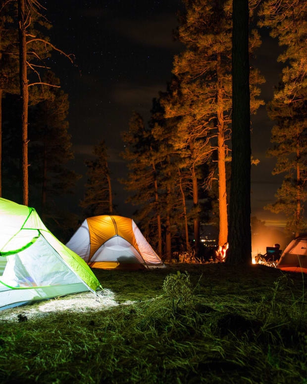 Camping Tent Forest
