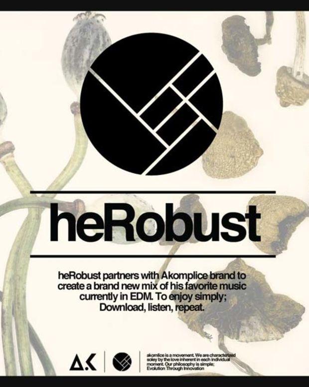 heRobust x Akomplice DJ Mix—Ready For A Bassbin Party?