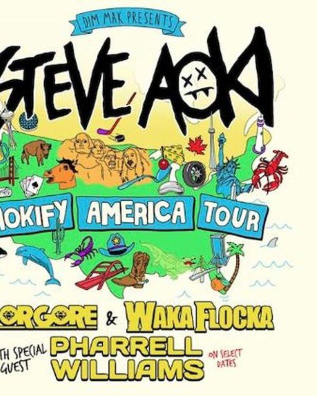 EDM News: Steve Aoki Announces 'Aokify America' Tour with Borgore, Waka Flocka Flame, + Pharrell Williams