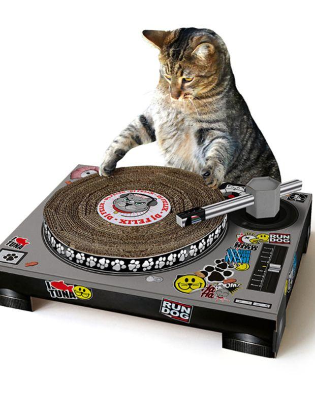 The DJ Cat Scratching Pad - EDM Culture