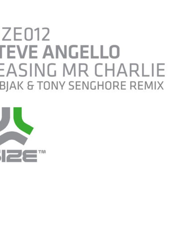 "EDM Download: Steve Angello ""Teasing Mr Charlie"" (Sebjak & Tony Senghore Remix)"