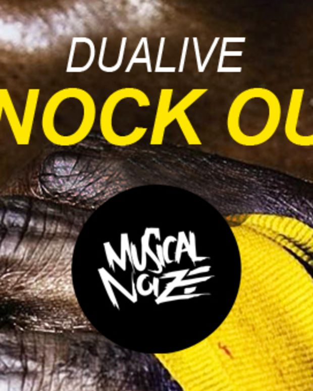 Dualive_Magnetic-Banner
