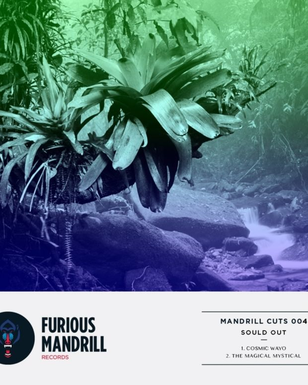 furiousmandrill