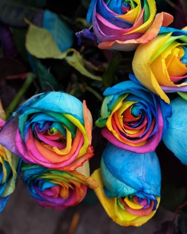 NYC_Pride_Parade_2012_-_051_(7457192150).jpg