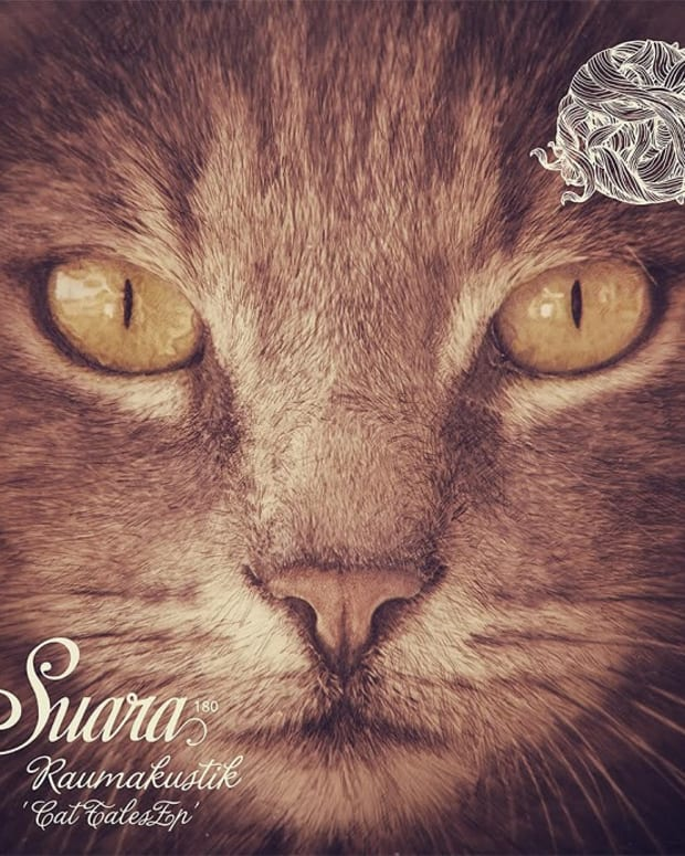 Exclusive Premiere: Raumakustik - Cat Tales EP on Suara