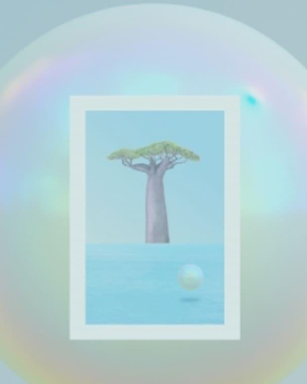 RODRIGUEZ-JR-BAOBAB_final cover