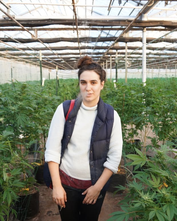Little Face's Katelyn Partlow in a Cannabis Garden