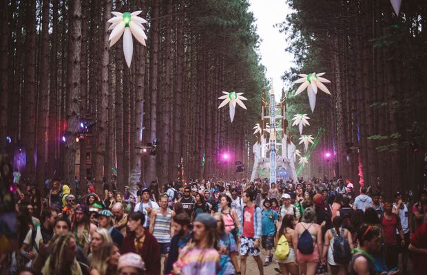 Electric Forest Bans Alcohol, Here's Why