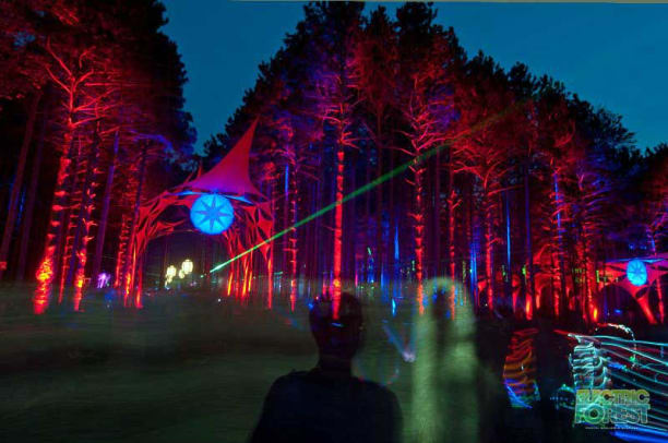 electric forest press 1