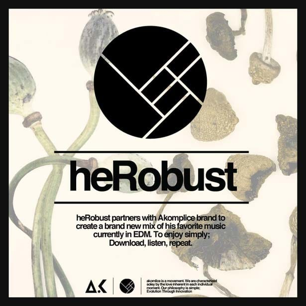 Edm Download Herobust X Akomplice Dj Mix Ready For A