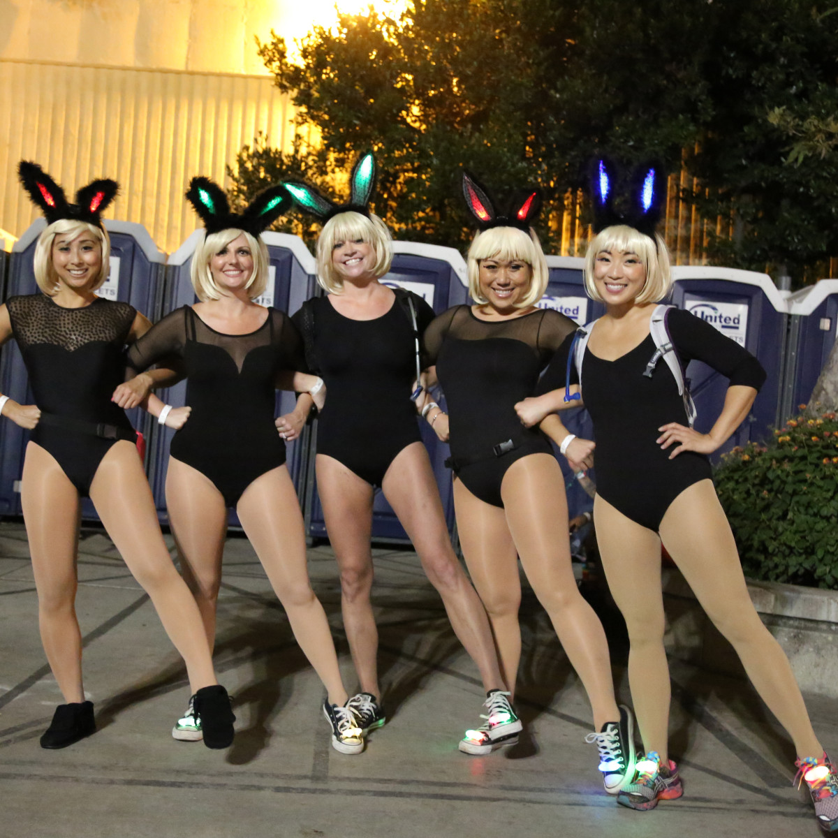 Bunnies HARD DOTD 2015