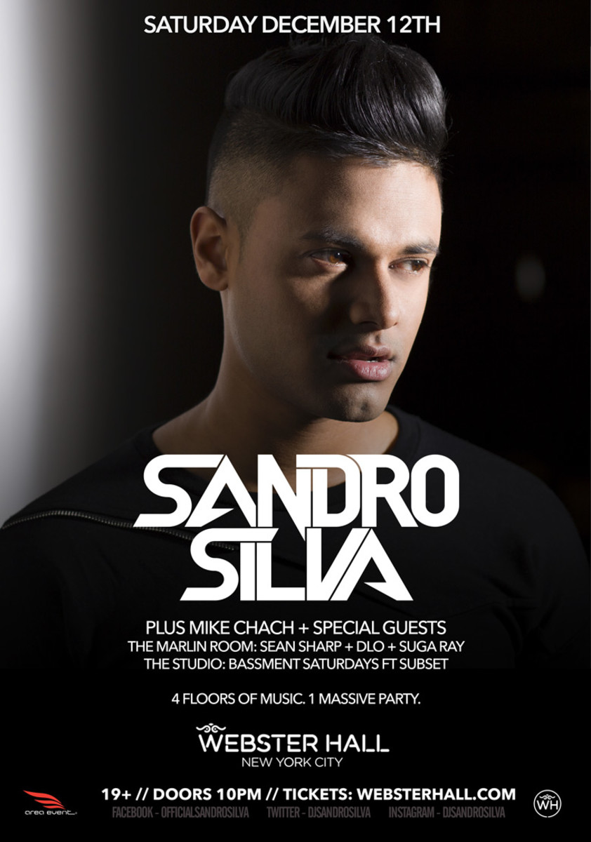 Sandro Silva at Webster Hall