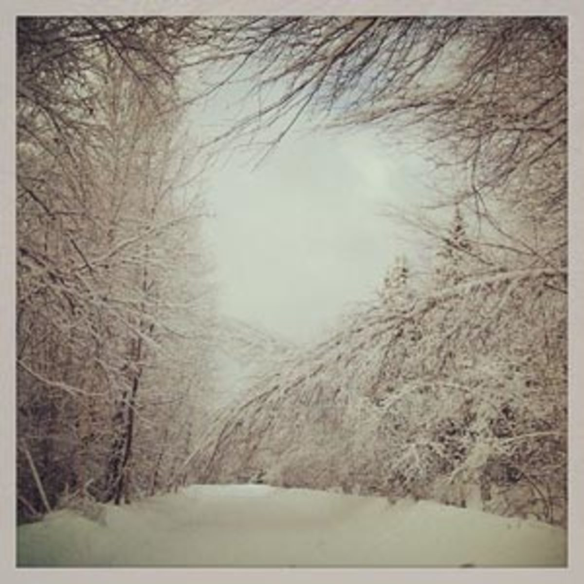snow.300