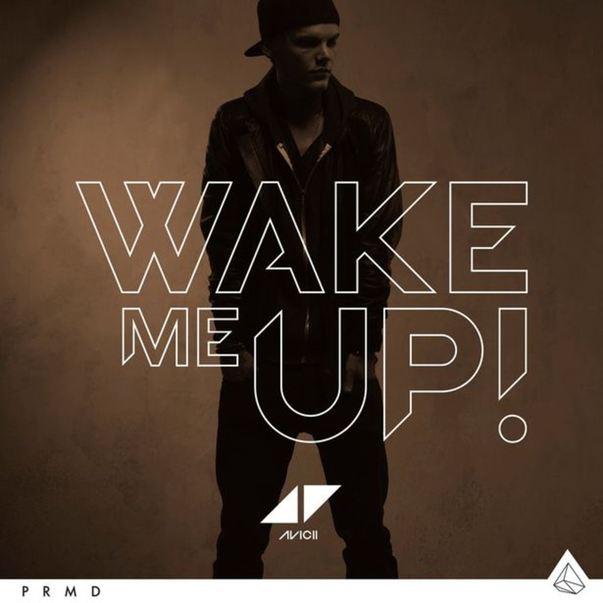 "EDM News: Avicii Releases ""Wake Me Up"" Featuring Aloe Blacc On itunes"