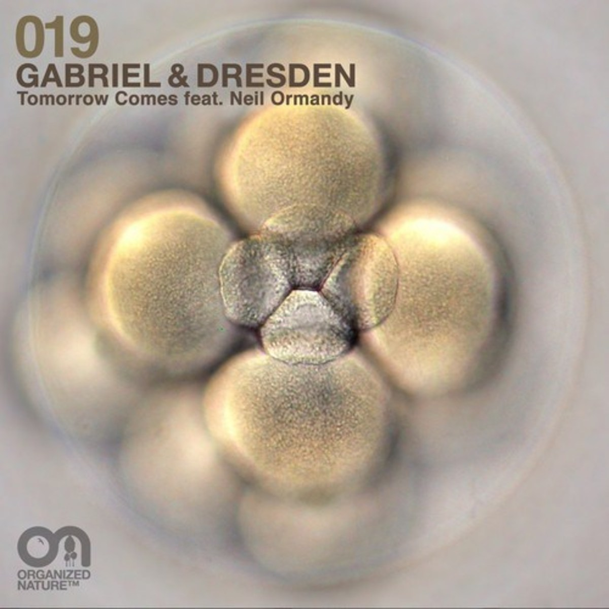 "EDM Exclusive: New Electronic Music From Gabriel & Dresden- ""Tomorrow Comes"" Feat. Neil Ormandy (Full Version)"