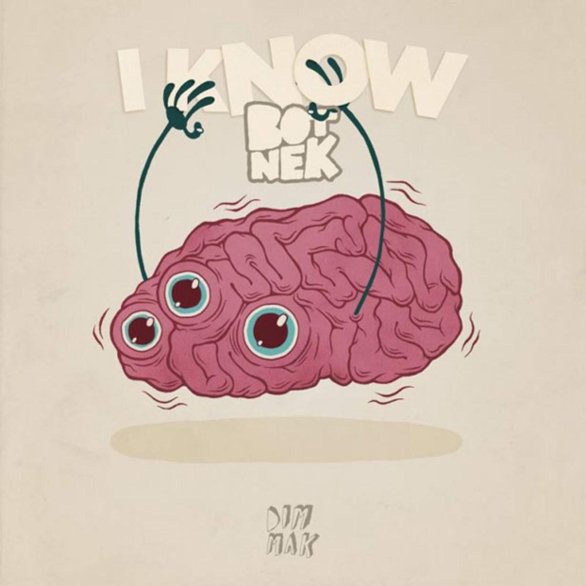 "Botnek ""I Know"" & ""Through The Night"" (Remixes) - EDM Download"
