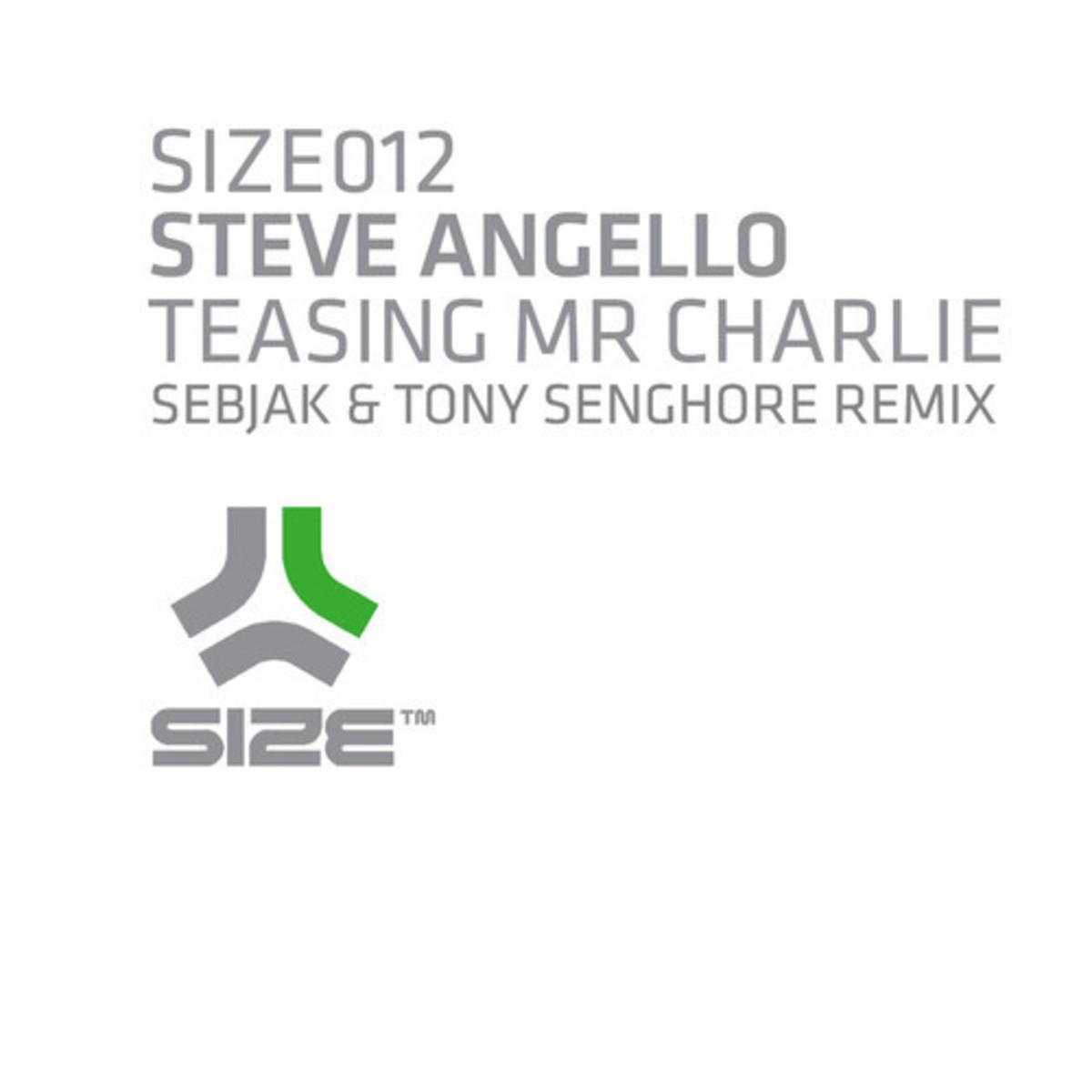 EDM Download: Steve Angello