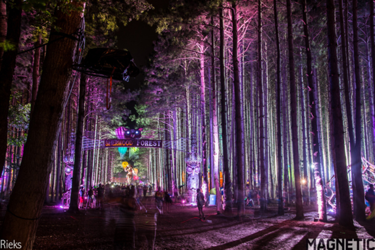 Insomniac's Touch Turns Electric Forest 2014 Into A Magical Experience