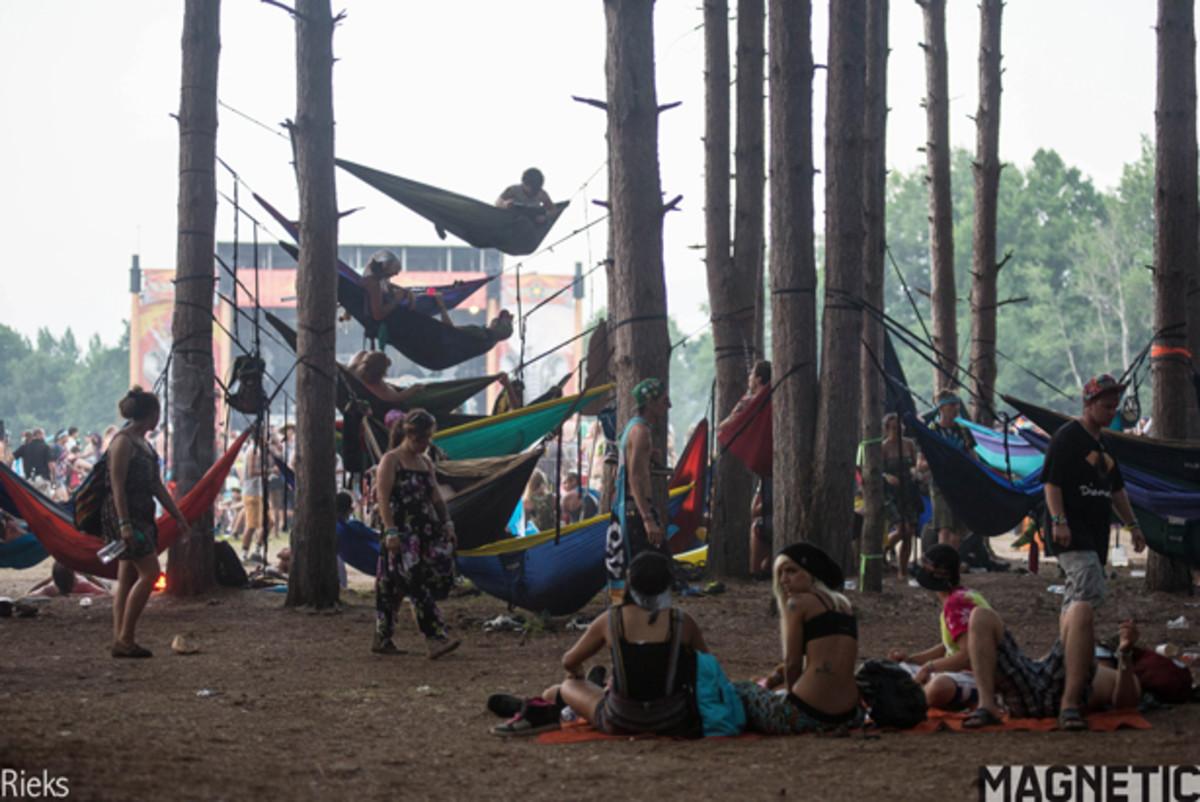 Hammockforest2