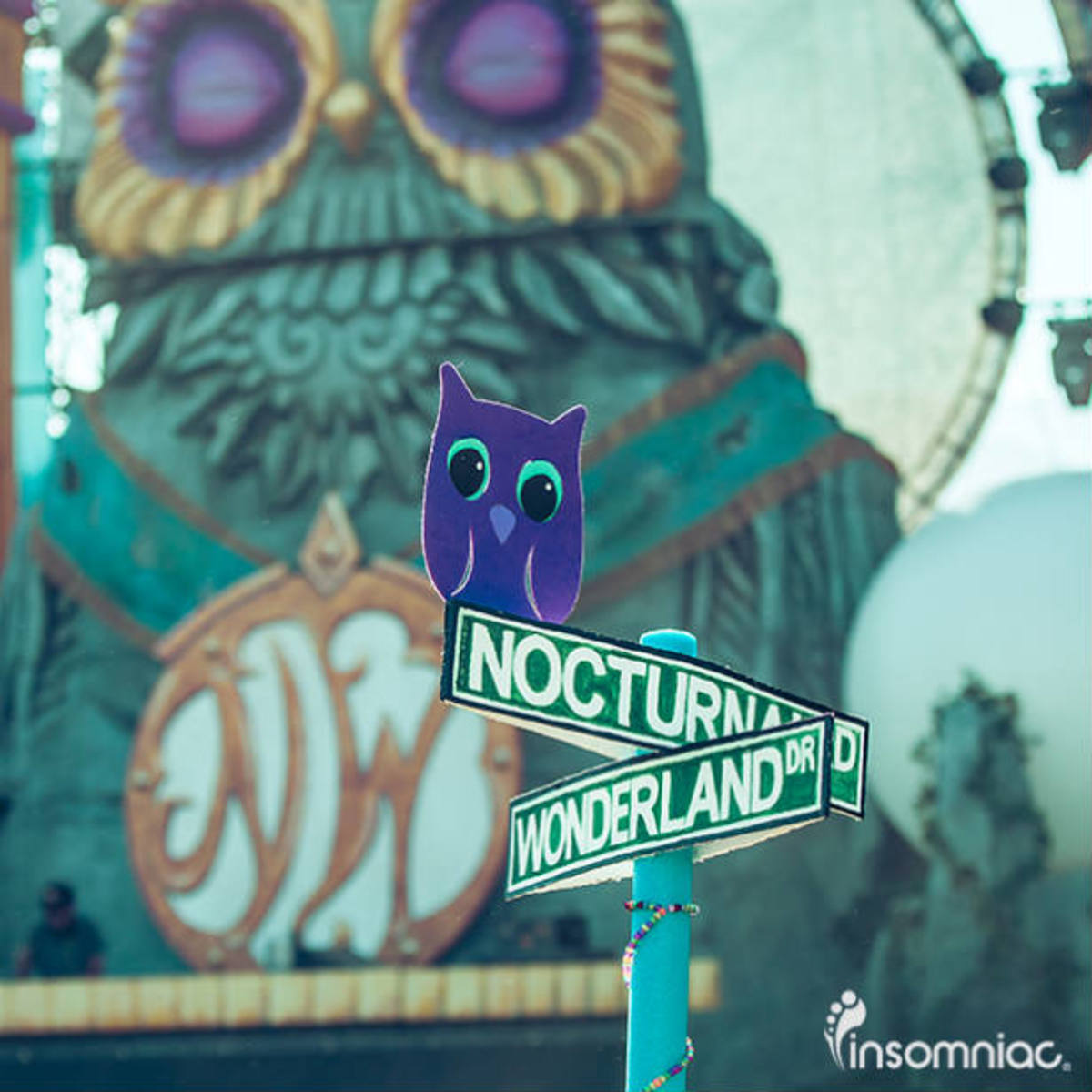 Nocturnal_Welcome
