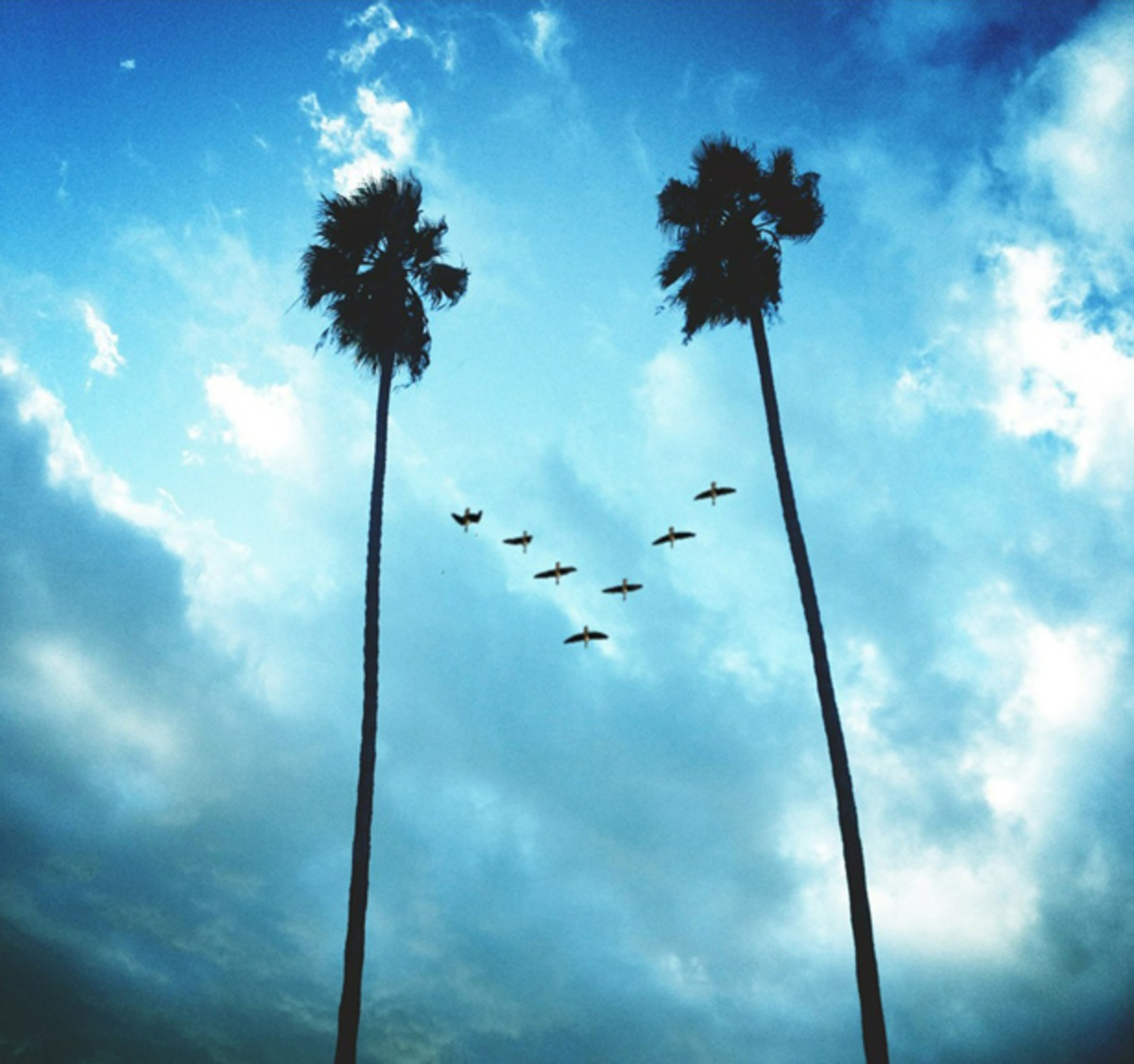 Top 10 Tropical House Tracks: Week 38