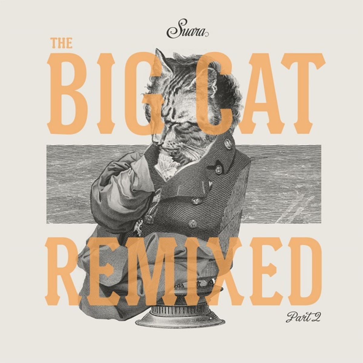 Exclusive Premiere: Coyu - The Big Cat Remixed Part 2