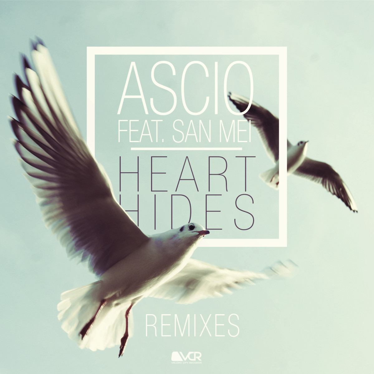 Ascio - Heart Hides Remixes
