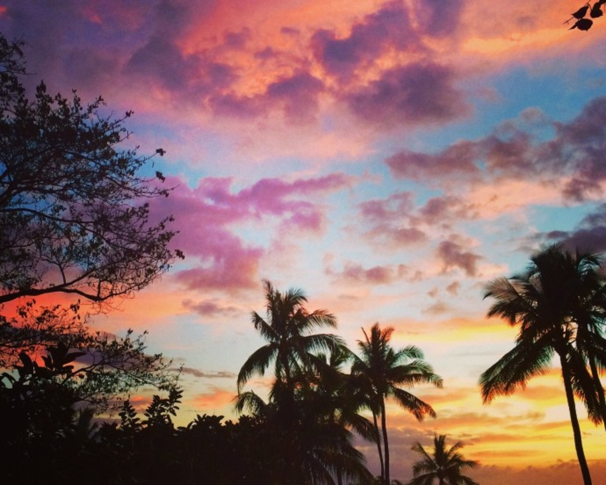 Top 10 Tropical House / Chill Tracks - Chart 5.8.15