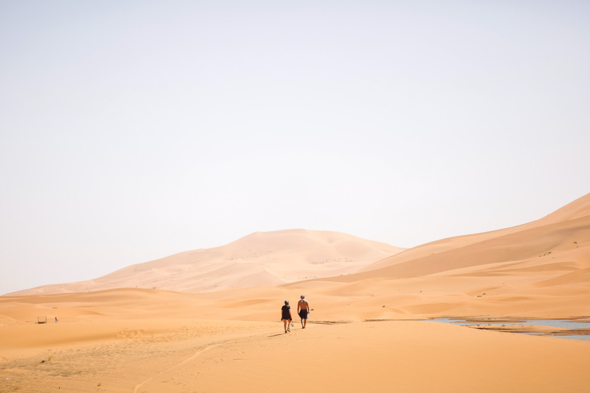 Desert Walkers Transahara