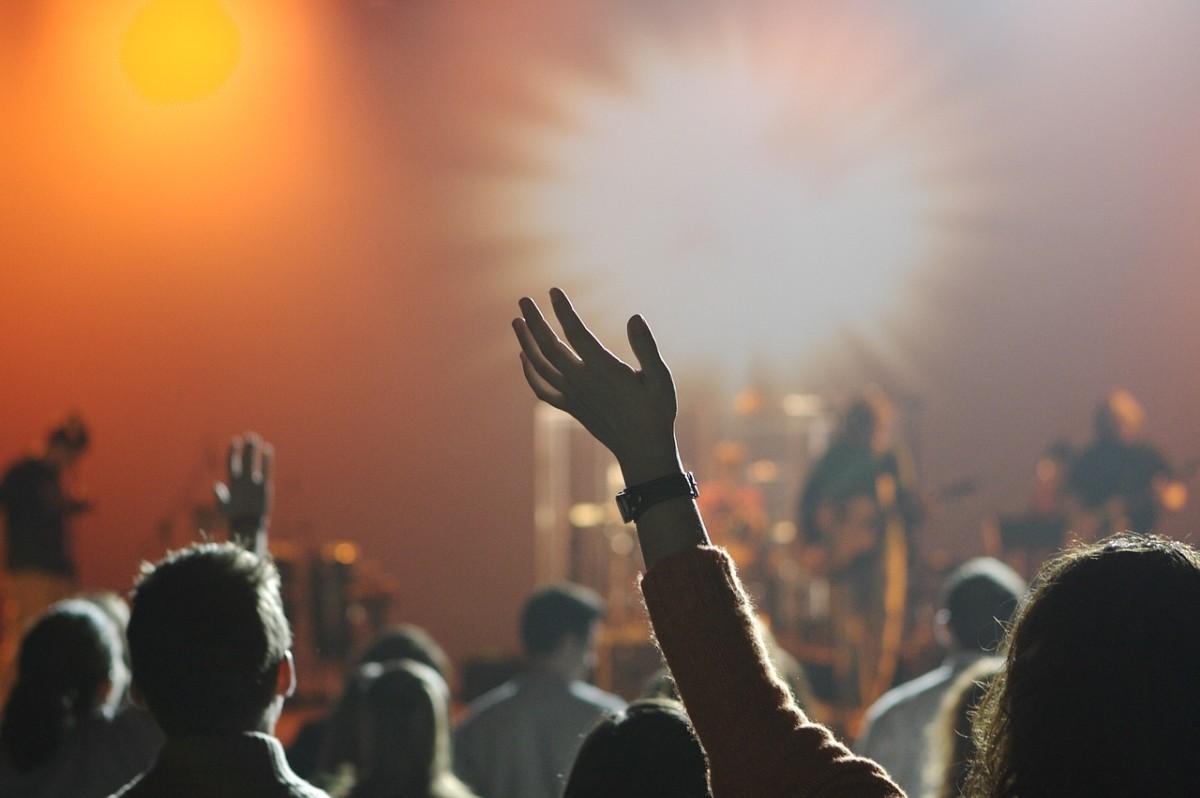 Concert audience crowd