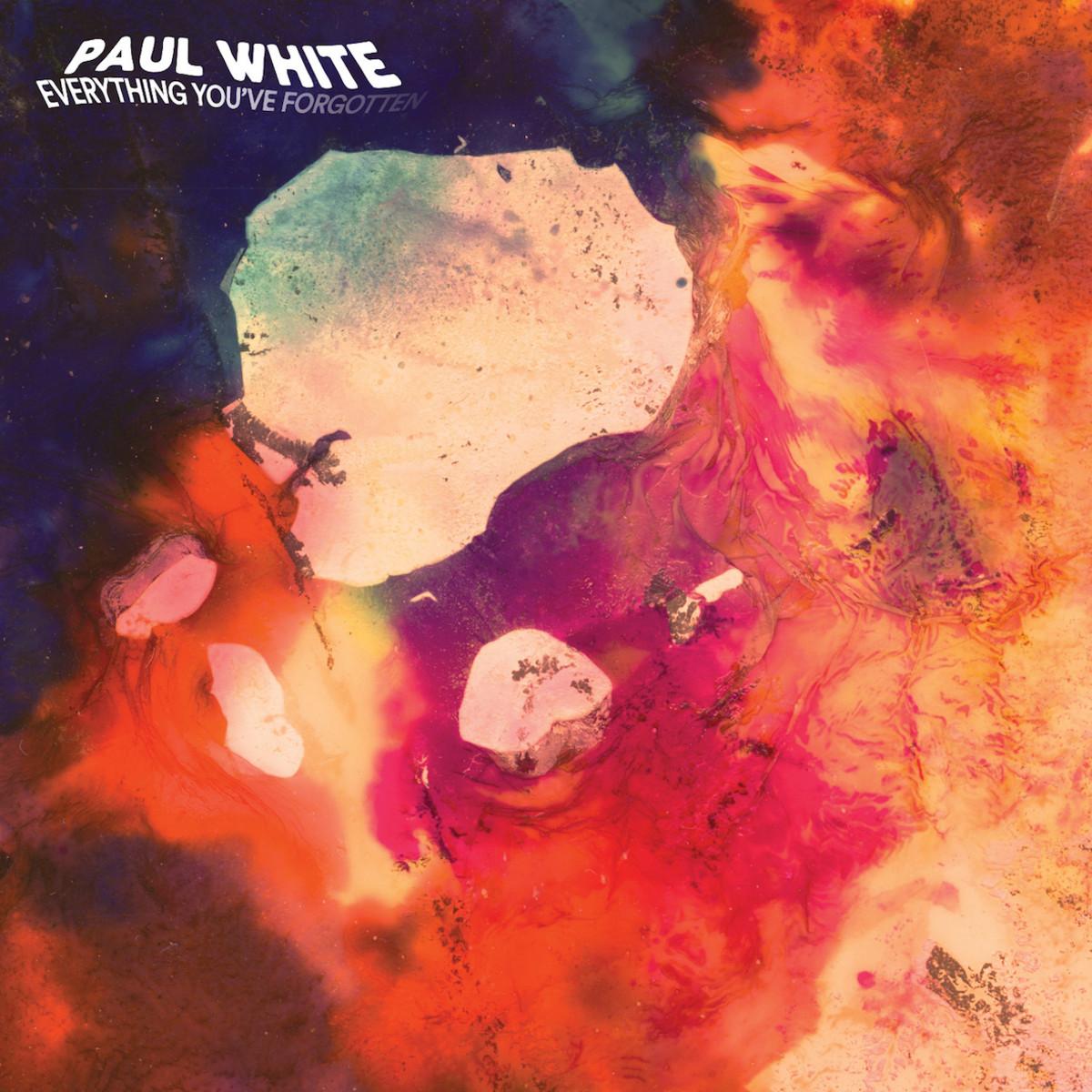 Paul_White_Everything_You_ve_Forgotten_art.jpg