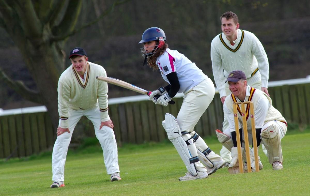 cricket-724615_1280