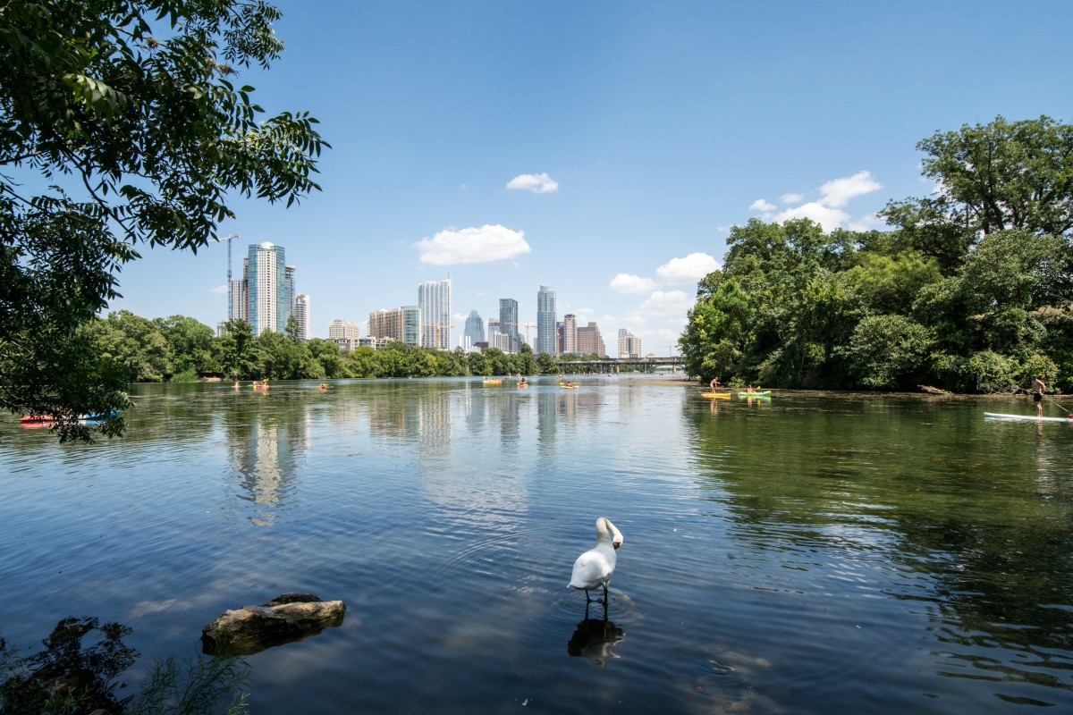 View of Downtown Austin from Ladybird Lake