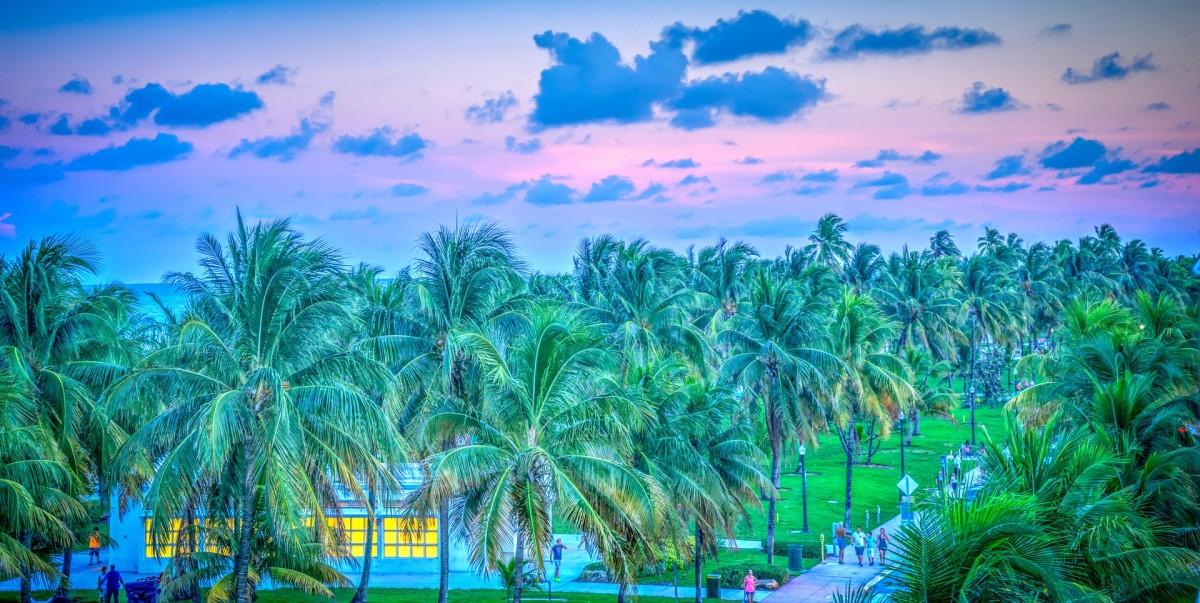 south-beach-891749_1920