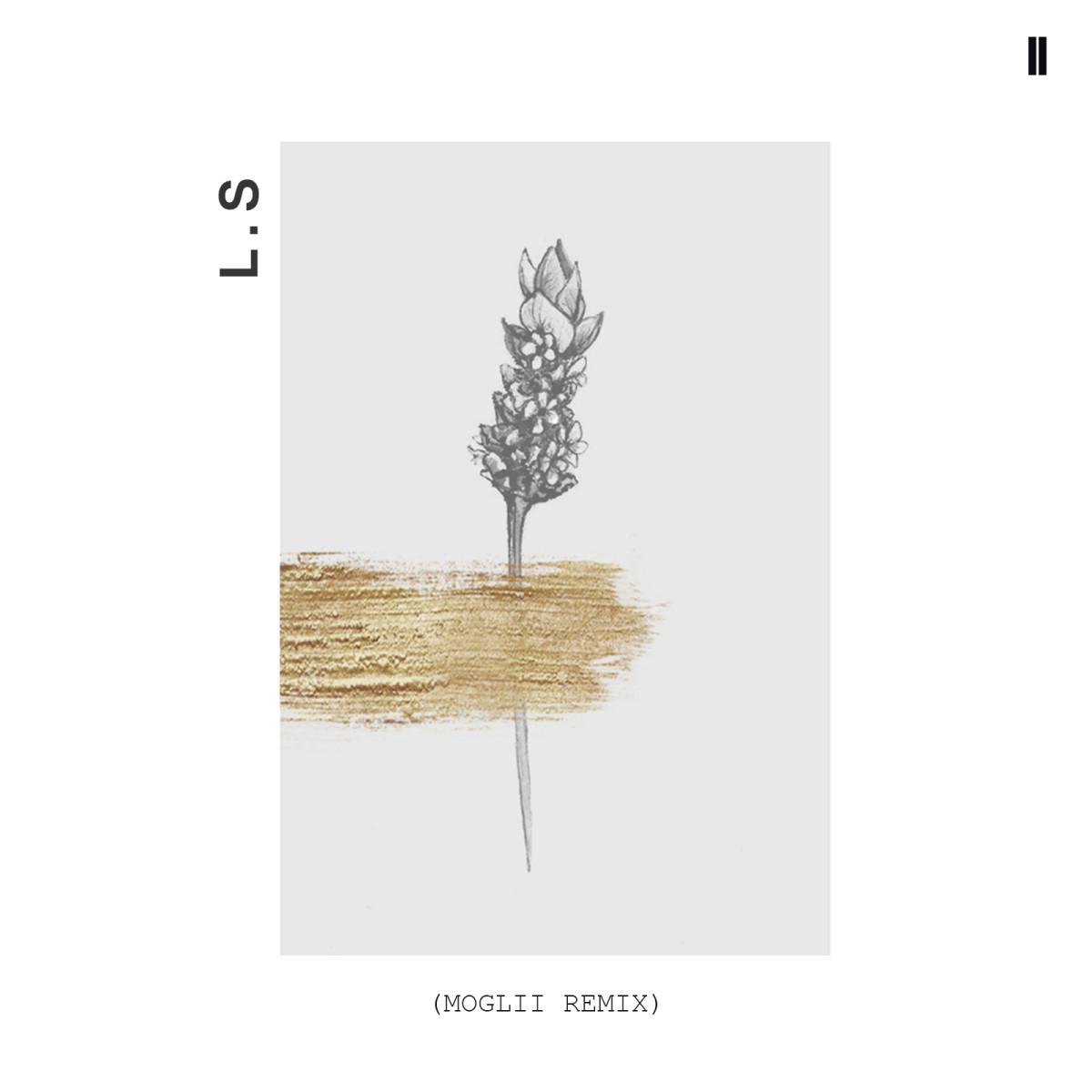 LS remix 01 (1)