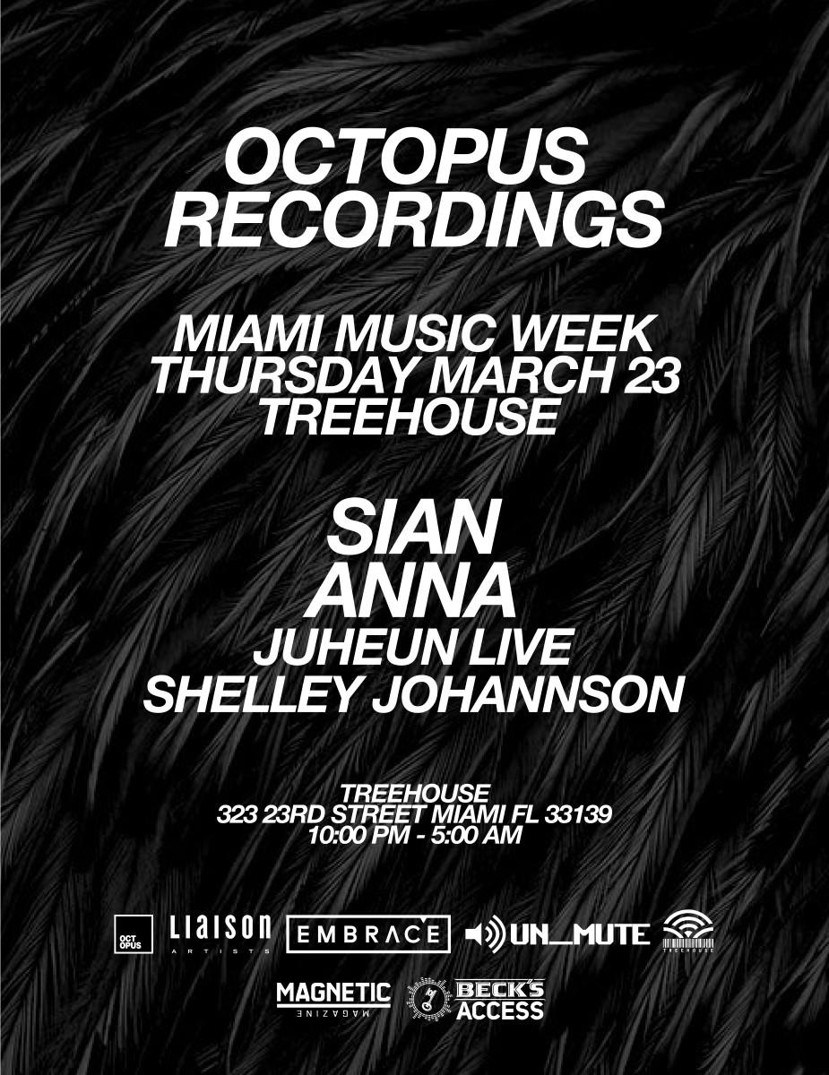 Octopus Miami-2017