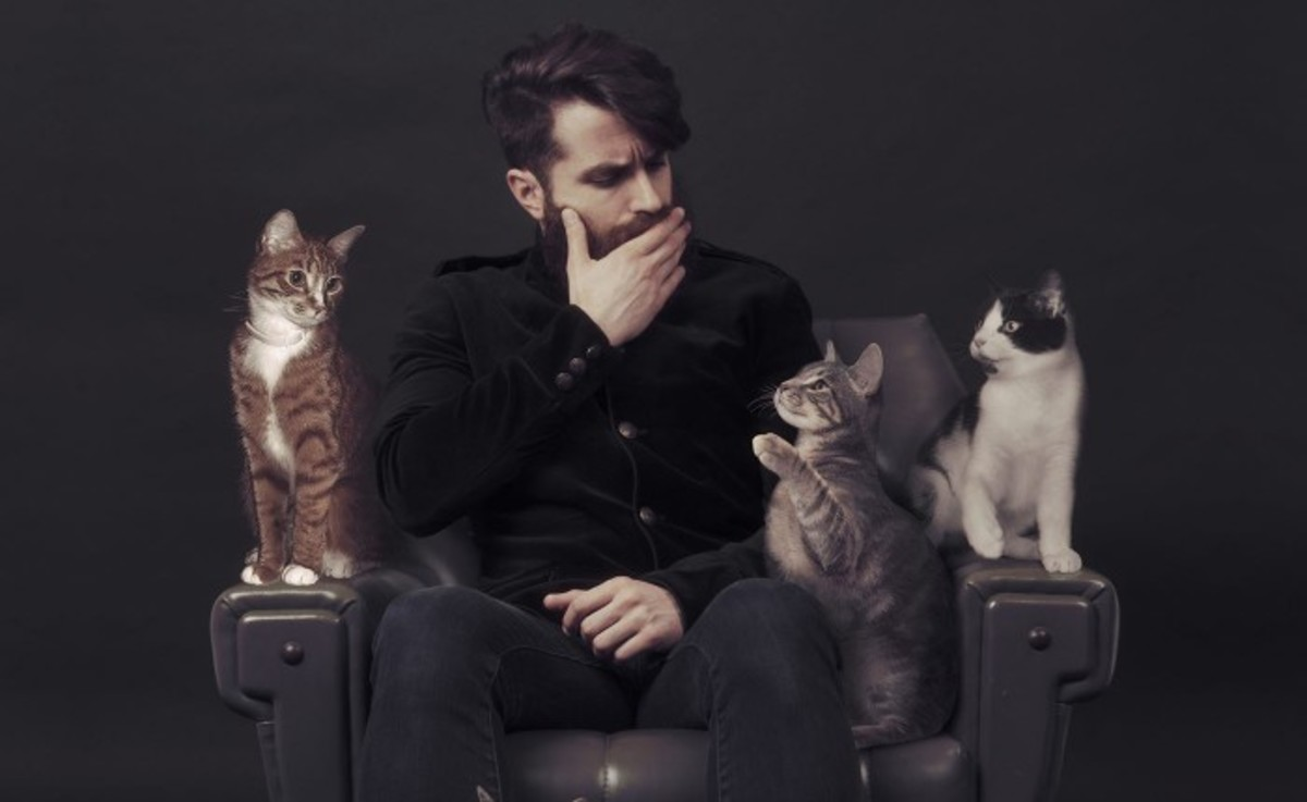 Coyu of Techno label suara with cats