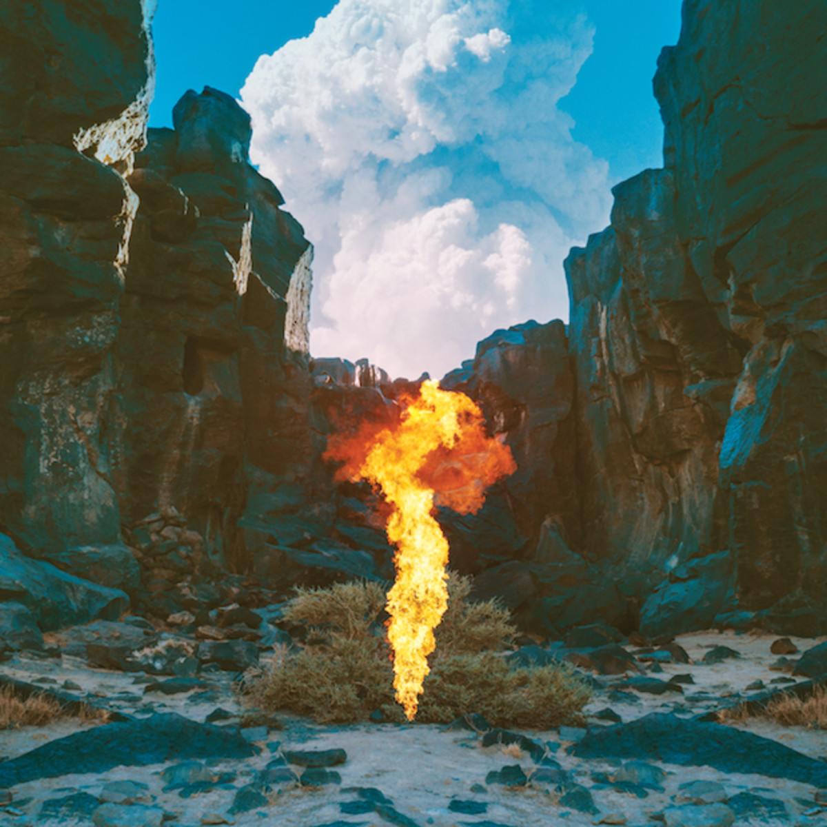 BONOBO MIGRATION ALBUM PACK SHOT.jpg