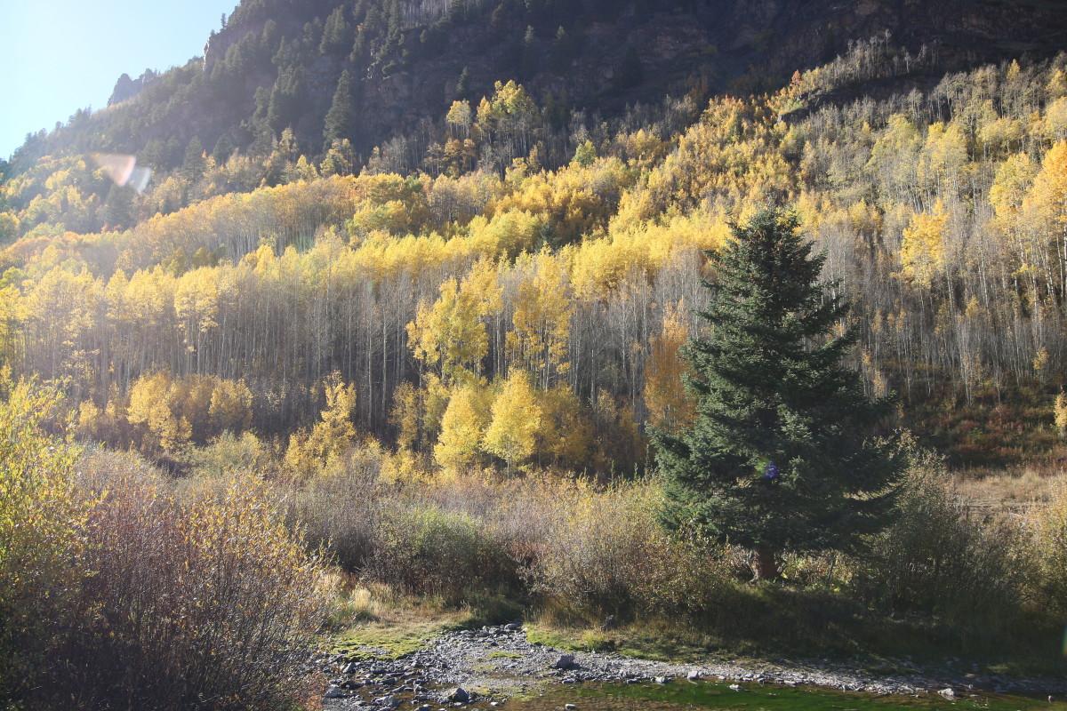 Aspen Colorado - Maroon Bells