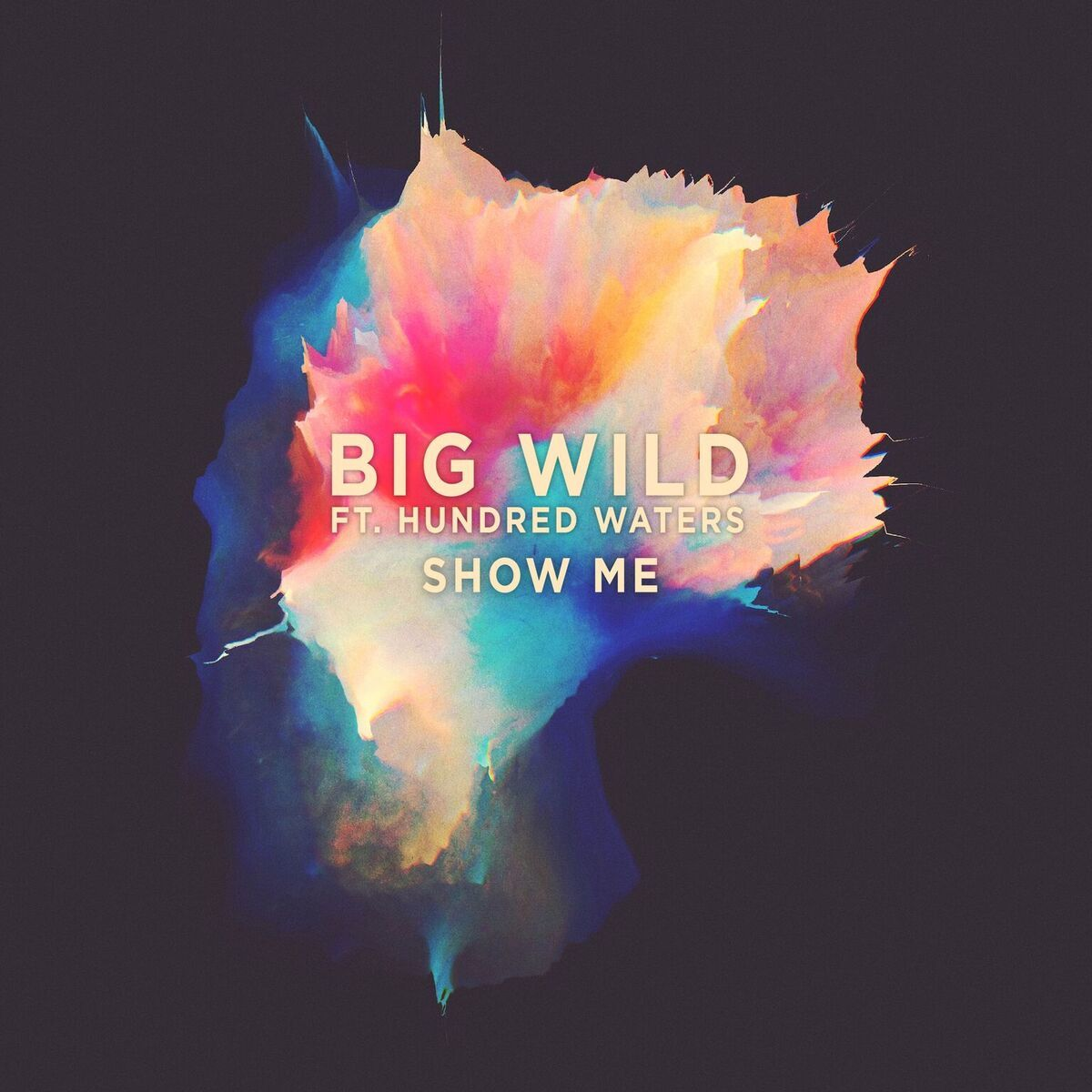 Bigwild_showme_cover_final_preview