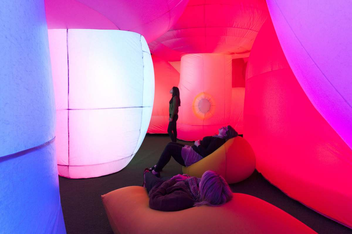 Article by Tessa Love