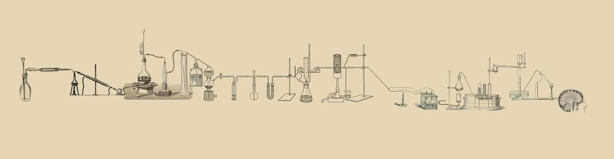 lab-512503_1280
